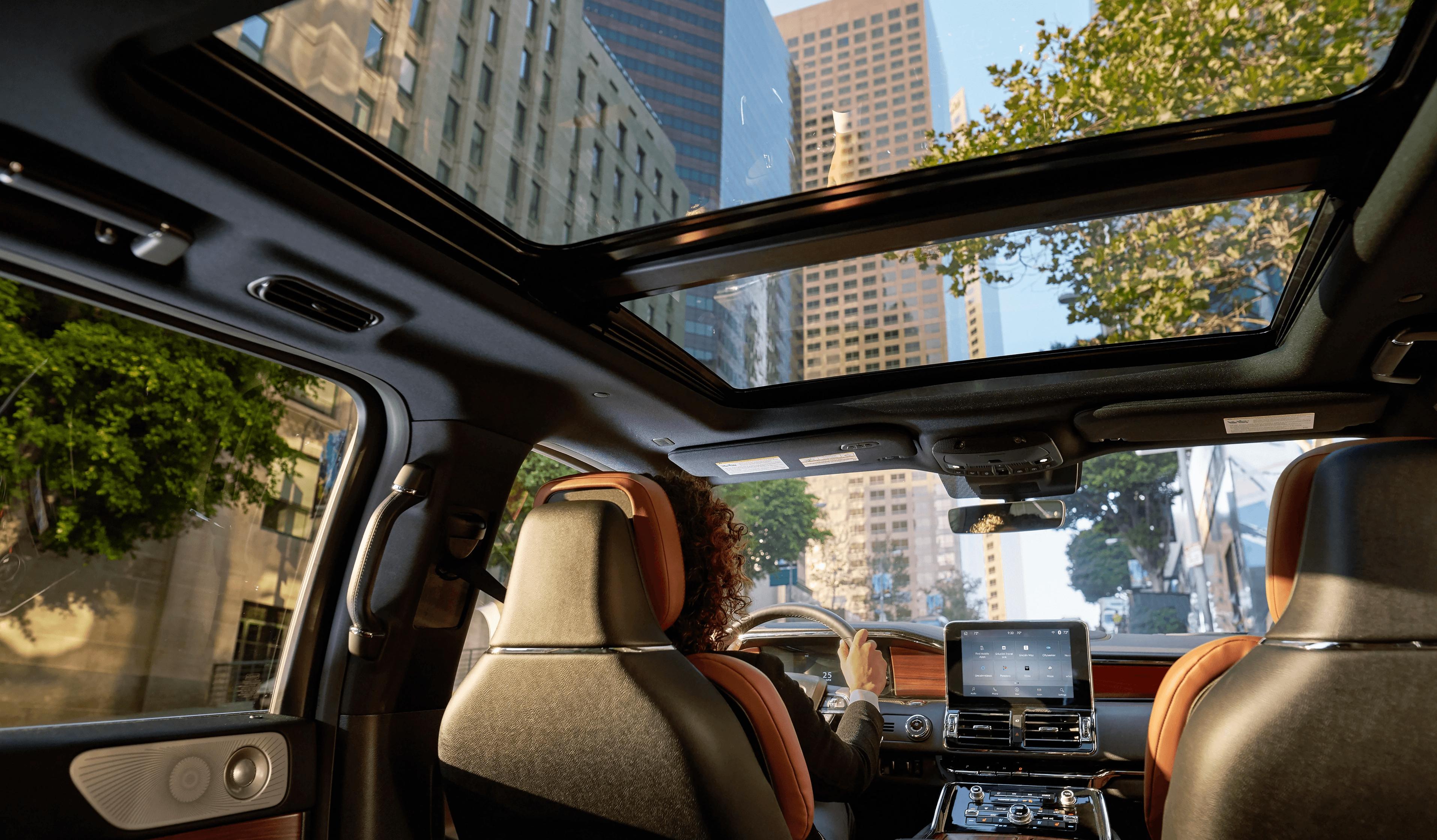 Navigator Interior Sunroof